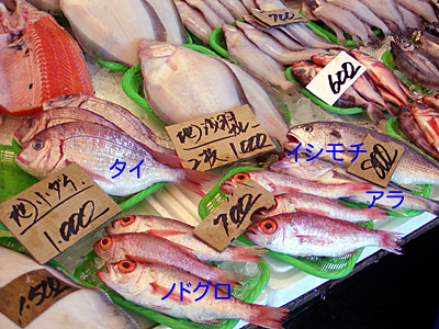 市の魚屋さん