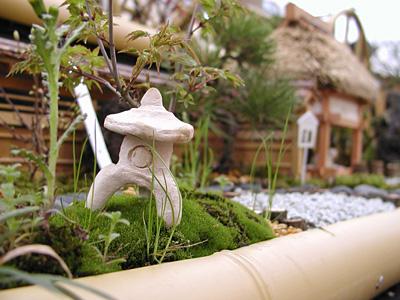 ミニチュア日本庭園