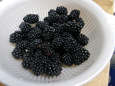 ブラックベリー