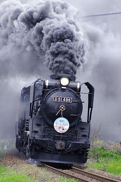 D51498
