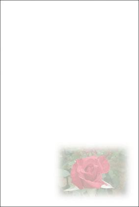 6薔薇(赤)