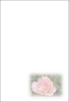 7薔薇ピンク