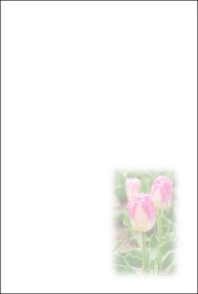 10churip1_b.jpg
